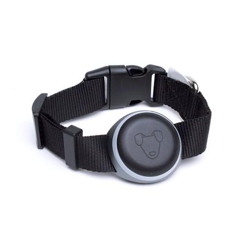 Mishiko Premium 2 GPS obojek a měřič aktivity