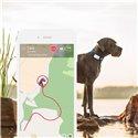 Tractive XL GPS Tracker pro psy